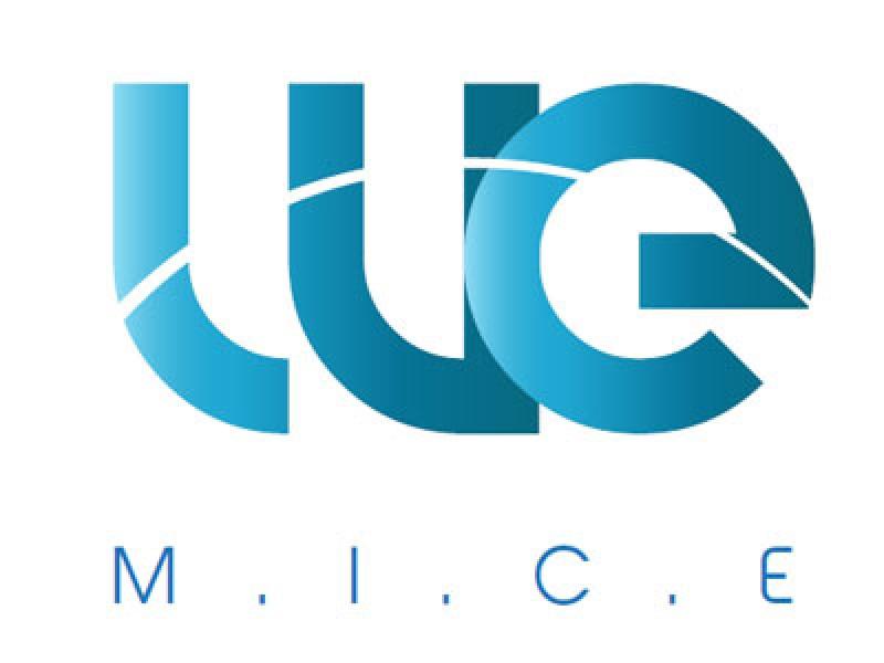 We M.I.C.E