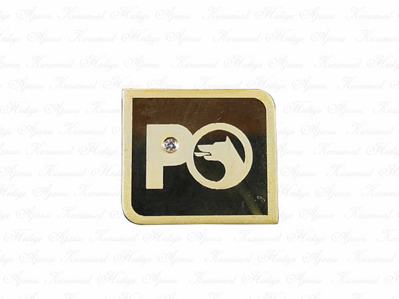 Custom Design Gold Pin