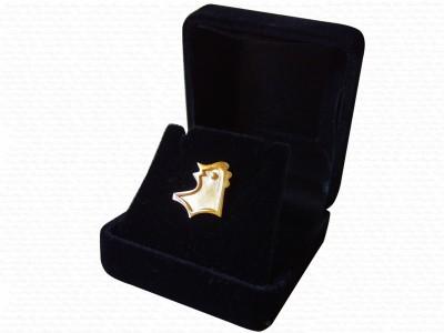 Corporate Design Gold Pin